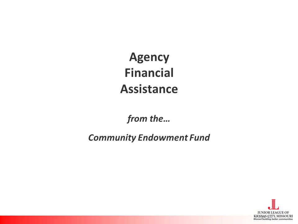 Agency Financial Assistance from the… Community Endowment Fund Page 20