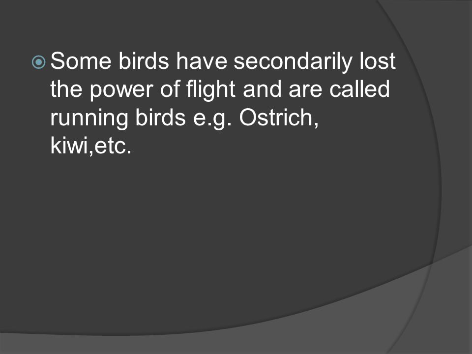  Some birds have secondarily lost the power of flight and are called running birds e.g. Ostrich, kiwi,etc.