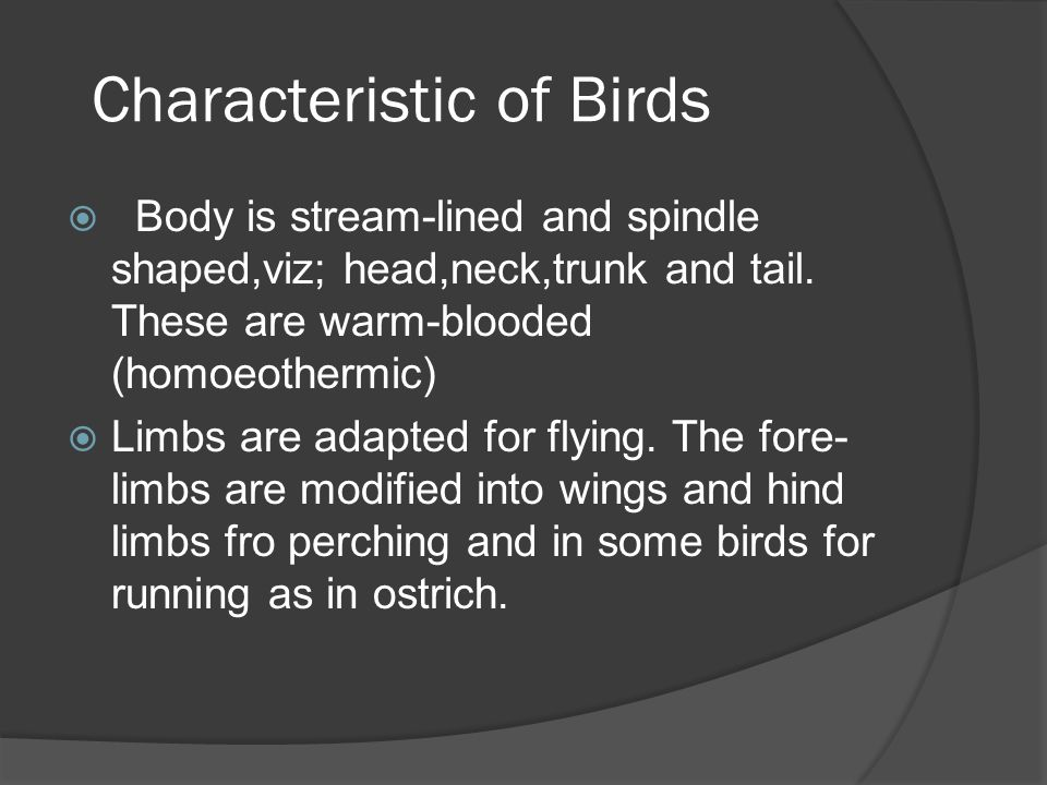 There is epidermal exoskeleton of feathers, legs bear scales  The skeleton is light due to air spaces which is an adaption for flying.