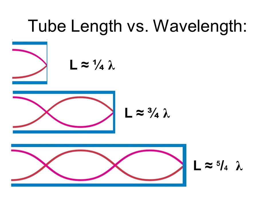 Tube Length vs. Wavelength: L ≈ ¼ λ L ≈ 5 / 4 λ L ≈ ¾ λ