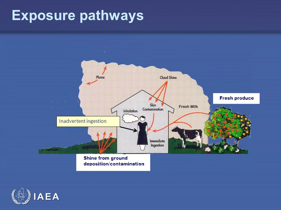 Common exposure pathways for a small radioactive source
