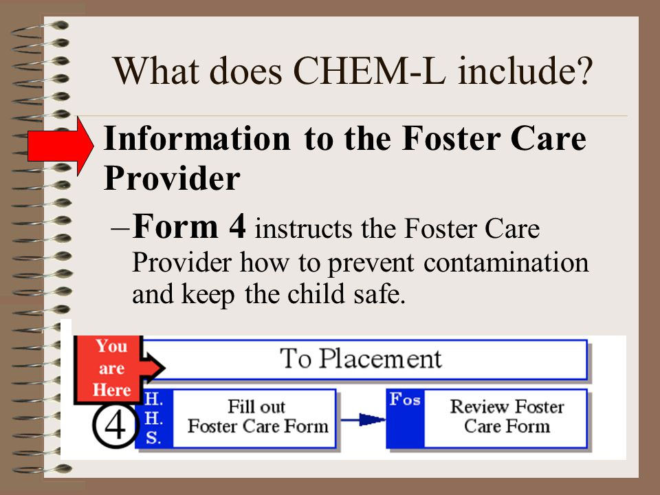 What does CHEM-L include? Information to the Foster Care Provider –Form 4 instructs the Foster Care Provider how to prevent contamination and keep the