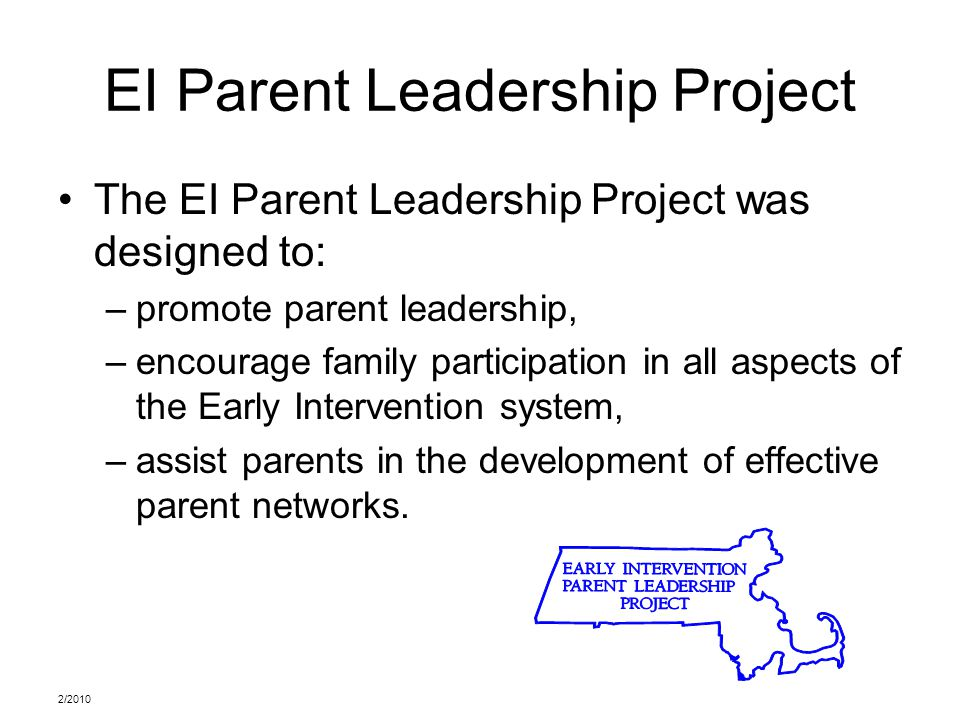 2/2010 EI Parent Leadership Project The EI Parent Leadership Project was designed to: –promote parent leadership, –encourage family participation in all aspects of the Early Intervention system, –assist parents in the development of effective parent networks.