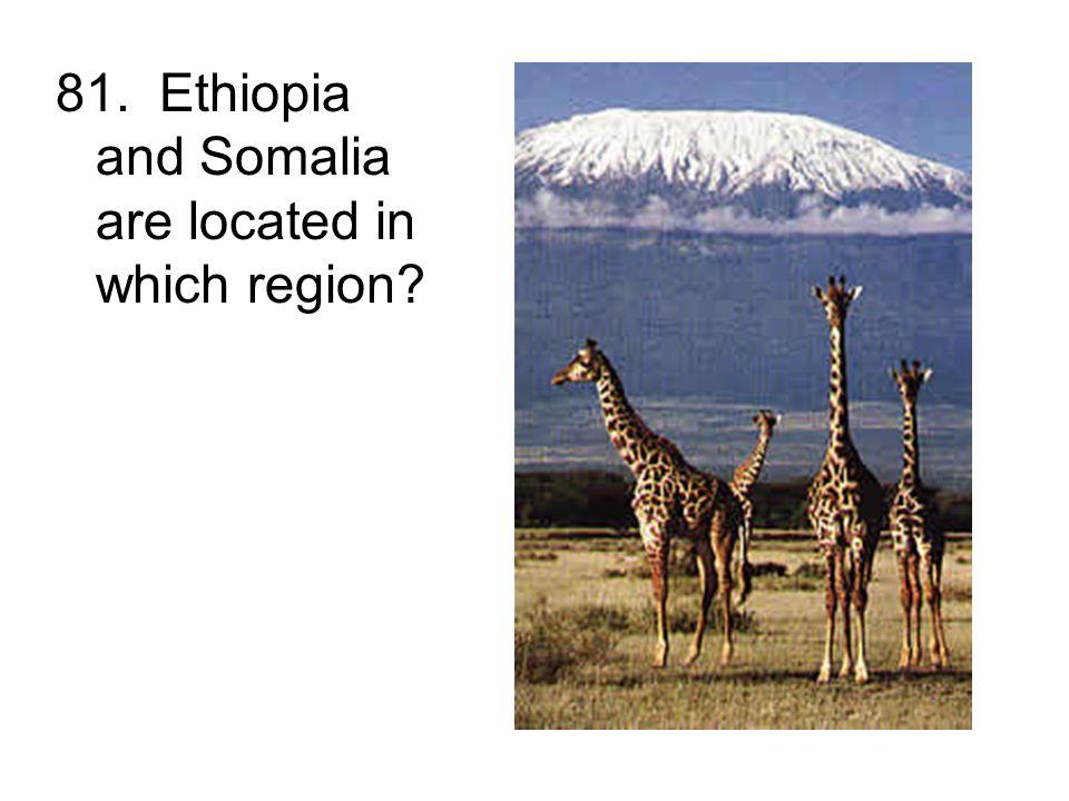 81. Ethiopia and Somalia are located in which region?
