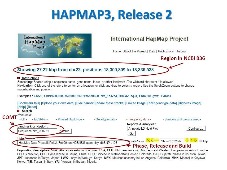 HapMap Genotyped SNPs in COMT