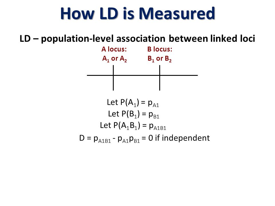Common LD Measures D = |d| –Preferred measure for population geneticists –Maximum value is bounded by the marginals D' = |d|/d max –D' varies between 0 and 1 –Does not have an easy interpretation and 1.0 is achieved if one off-diagonal is zero r 2 ( D 2 ) = D 2 /p(1-p)q(1-q) –Has several interpretations: = squared (phi) correlation so lies in [0,1].