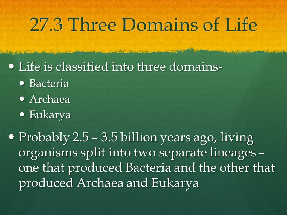 27.3 Three Domains of Life Life is classified into three domains- Life is classified into three domains- Bacteria Bacteria Archaea Archaea Eukarya Euk