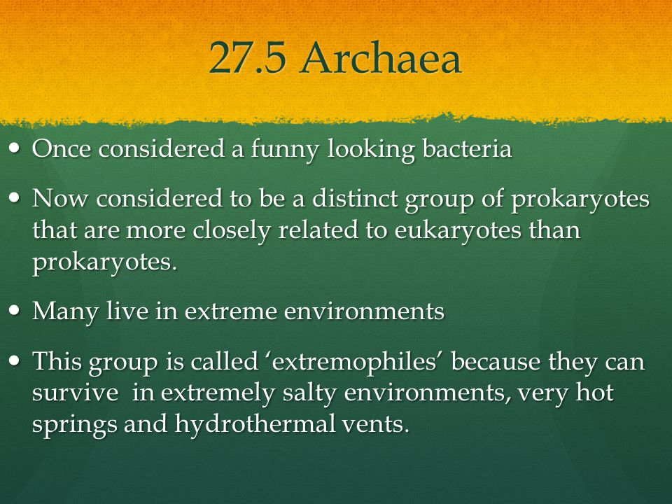 More on Archaea- pronounced our-kee-uh Not all are extremists.