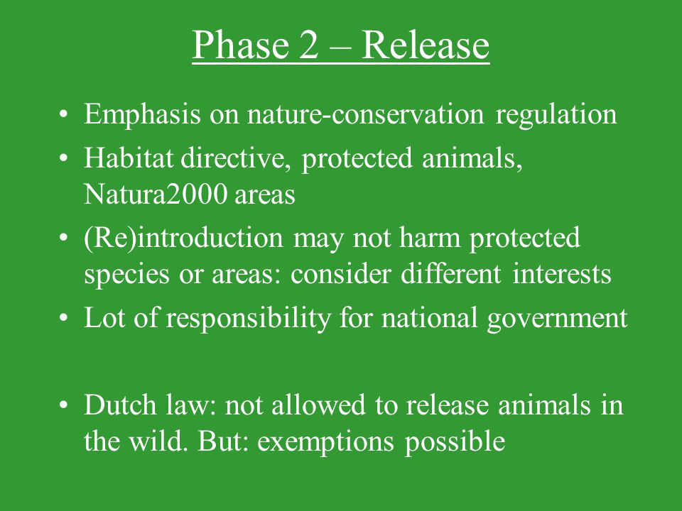 Phase 2 – Release Emphasis on nature-conservation regulation Habitat directive, protected animals, Natura2000 areas (Re)introduction may not harm protected species or areas: consider different interests Lot of responsibility for national government Dutch law: not allowed to release animals in the wild.
