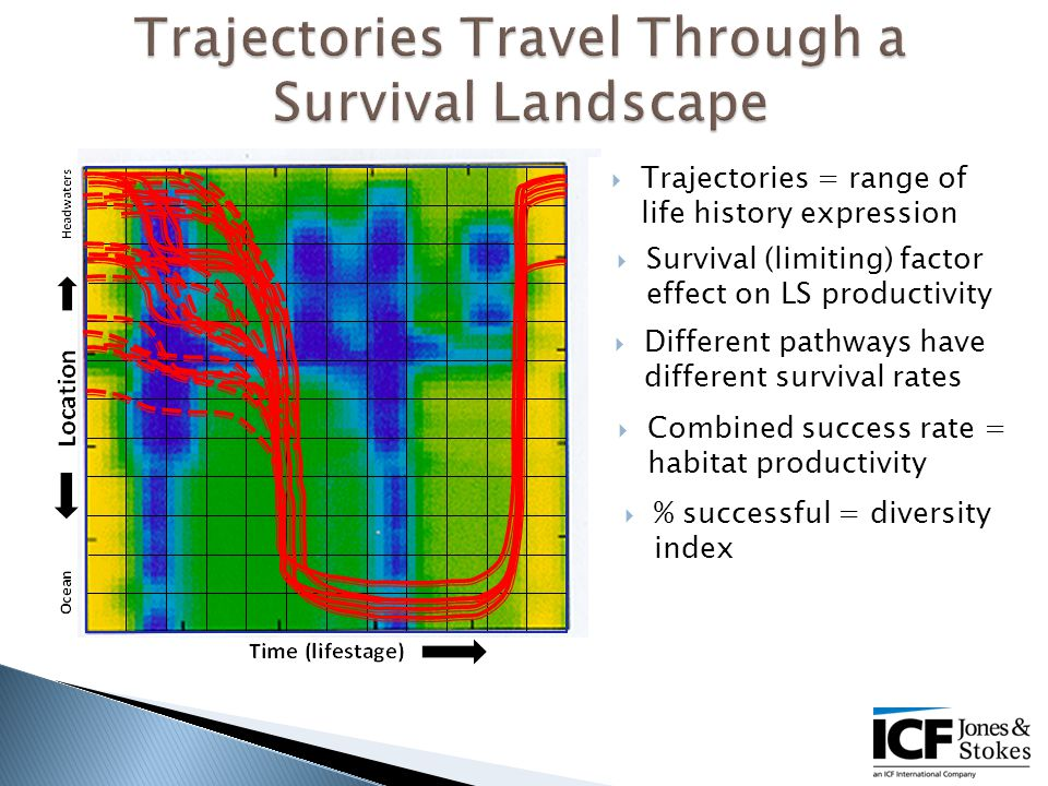  Trajectories = range of life history expression  Different pathways have different survival rates  Survival (limiting) factor effect on LS productivity  Combined success rate = habitat productivity  % successful = diversity index