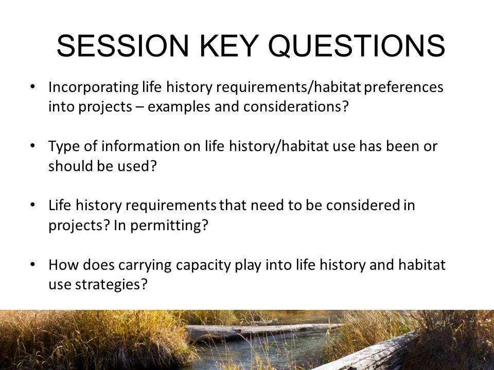 SESSION KEY QUESTIONS Incorporating life history requirements/habitat preferences into projects – examples and considerations.