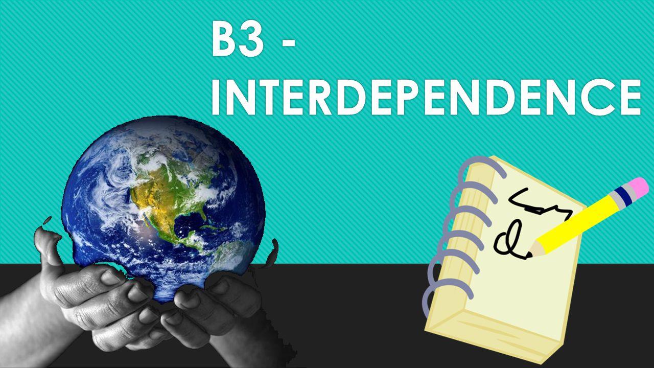 B3 - INTERDEPENDENCE