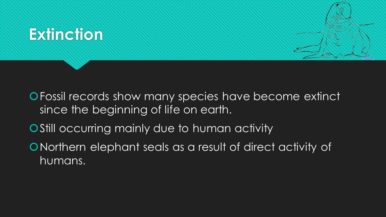 Extinction Factors  Sudden environmental changes  Diseases  Predators (when one food source disappears, predator must find new one to survive)  New competitors  Sudden environmental changes  Diseases  Predators (when one food source disappears, predator must find new one to survive)  New competitors
