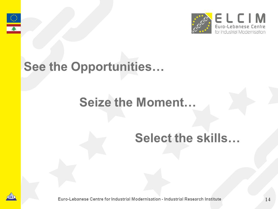 See the Opportunities… Seize the Moment… Select the skills… 14 Euro-Lebanese Centre for Industrial Modernisation - Industrial Research Institute