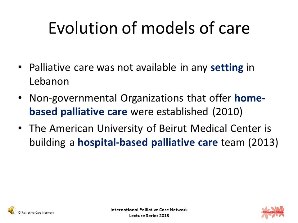 Palliative Care Milestones in Lebanon 2013: An issue in the Lebanese Medical Journal will be dedicated to Palliative Care and will report on the recom