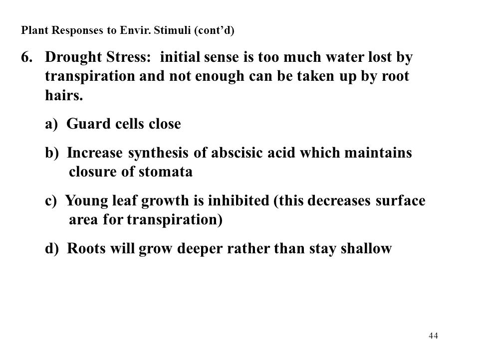 44 Plant Responses to Envir. Stimuli (cont'd) 6.Drought Stress: initial sense is too much water lost by transpiration and not enough can be taken up b