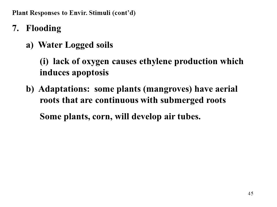 45 Plant Responses to Envir. Stimuli (cont'd) 7.Flooding a) Water Logged soils (i) lack of oxygen causes ethylene production which induces apoptosis b