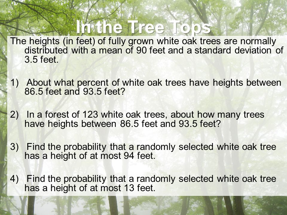 The heights (in feet) of fully grown white oak trees are normally distributed with a mean of 90 feet and a standard deviation of 3.5 feet.
