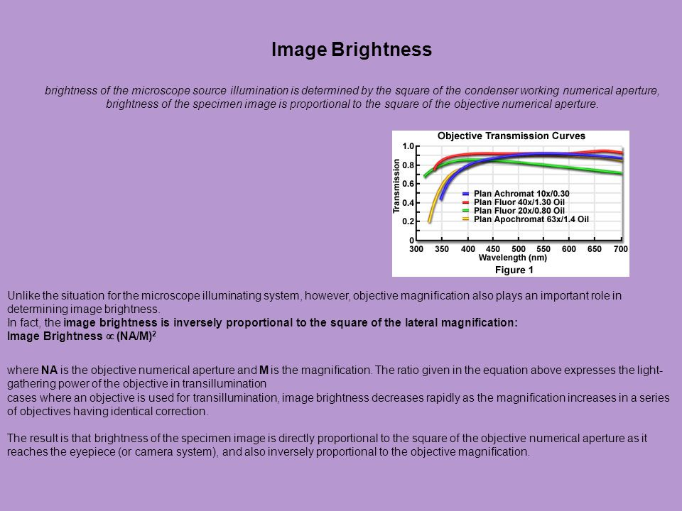 Image Brightness brightness of the microscope source illumination is determined by the square of the condenser working numerical aperture, brightness