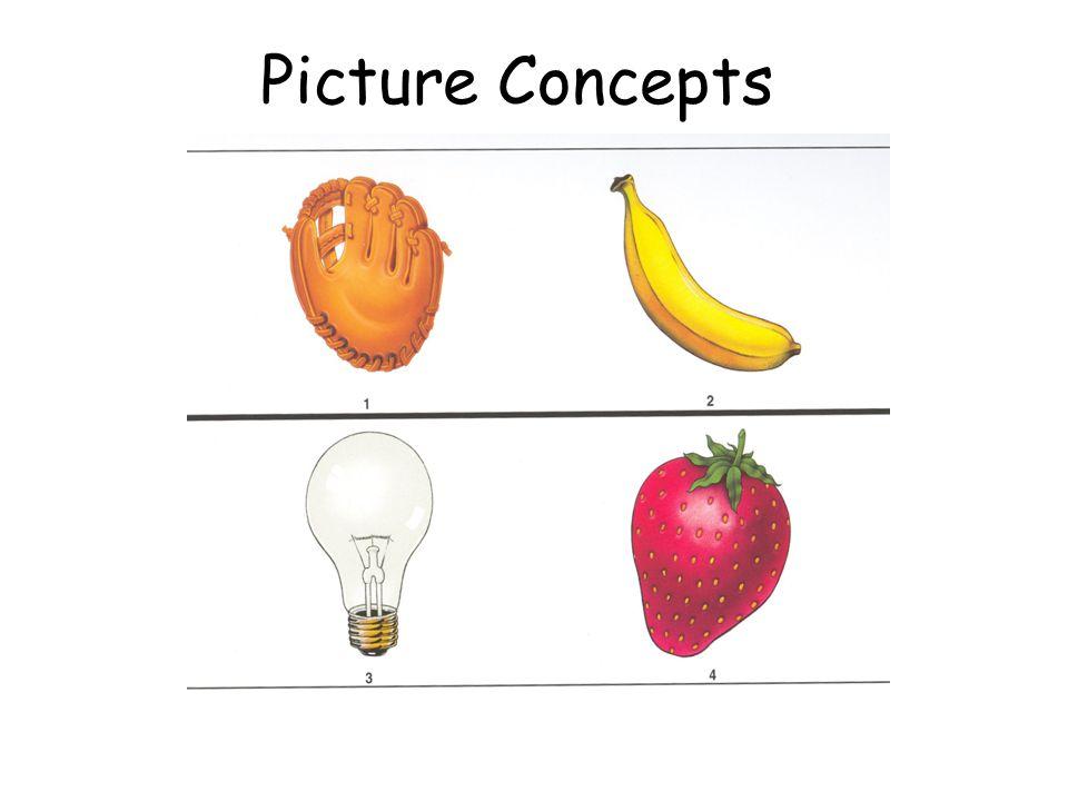 Picture Concepts