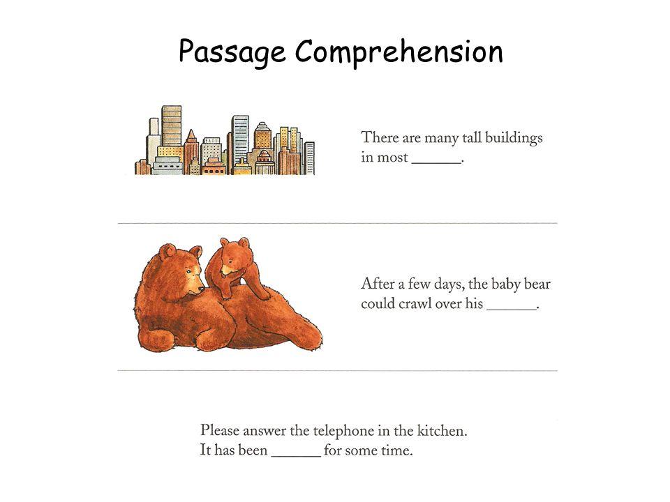 Passage Comprehension