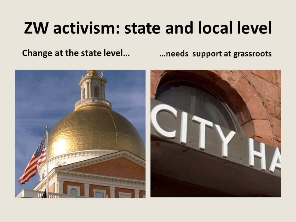 ZW activism: state and local level Change at the state level… …needs support at grassroots