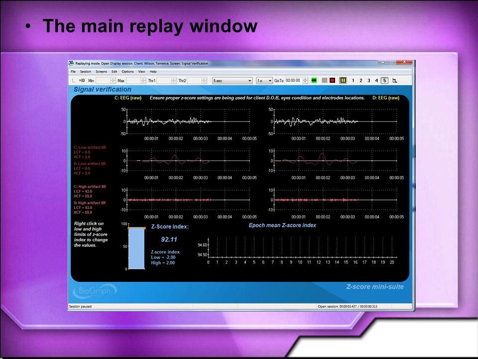 The main replay window