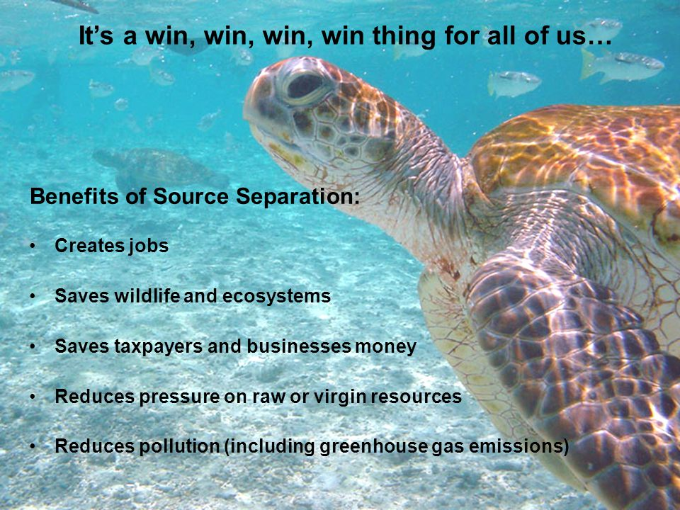 It's a win, win, win, win thing for all of us… Creates jobs Saves wildlife and ecosystems Saves taxpayers and businesses money Reduces pressure on raw or virgin resources Reduces pollution (including greenhouse gas emissions) Benefits of Source Separation: