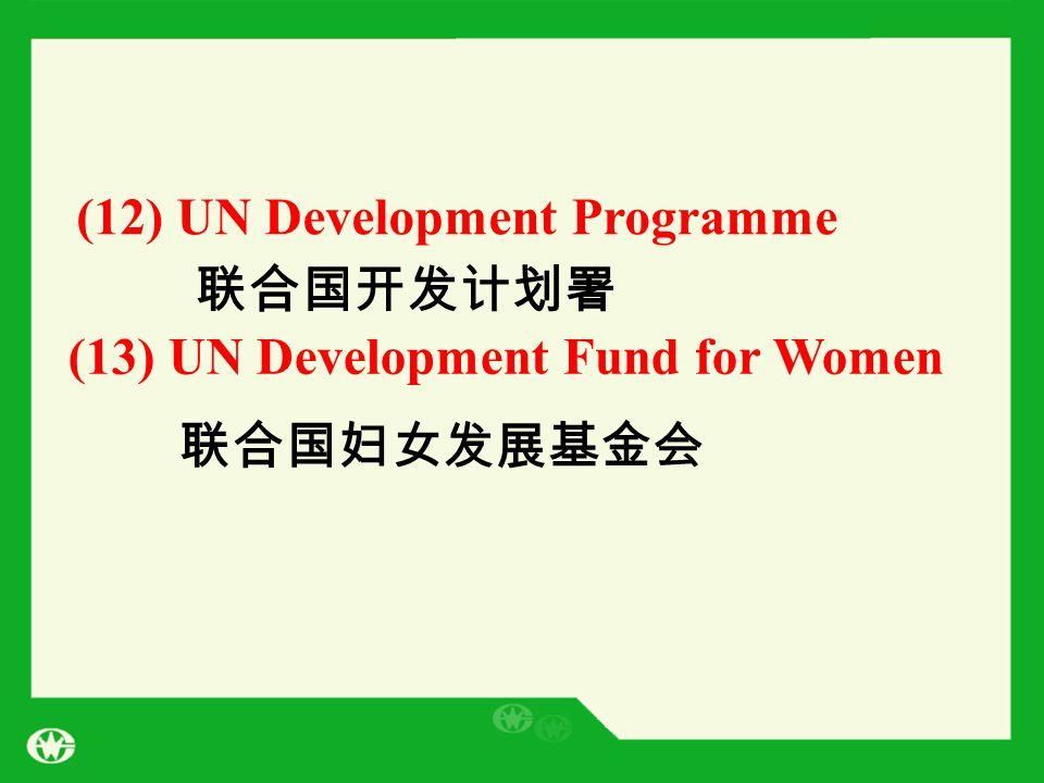 (12) UN Development Programme (13) UN Development Fund for Women 联合国开发计划署 联合国妇女发展基金会