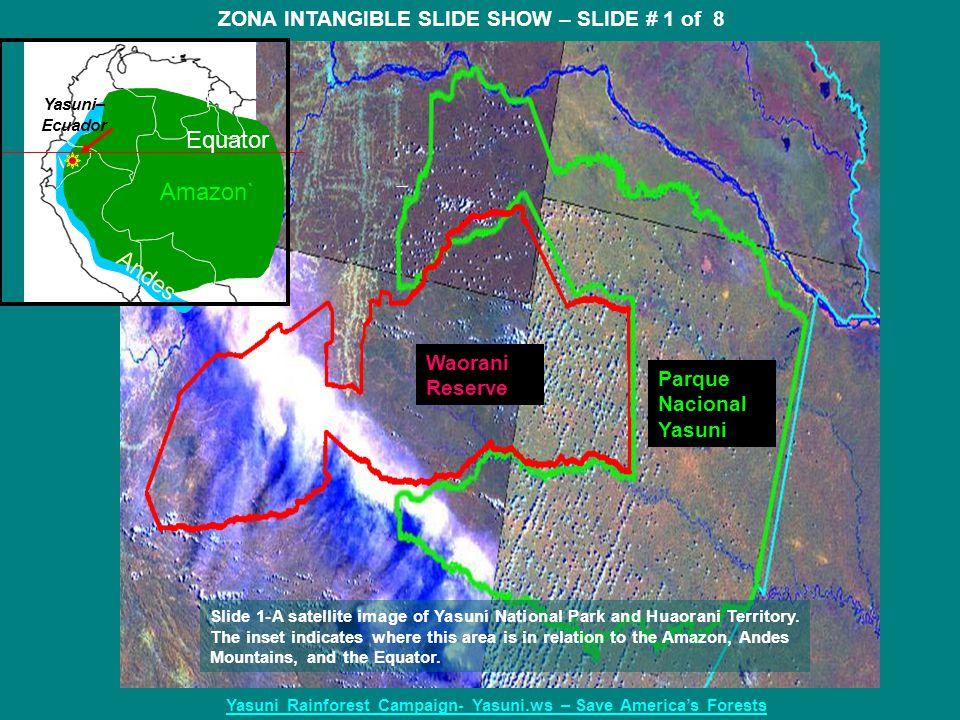 Parque Nacional Yasuni Waorani Reserve Amazon` Equator Andes ZONA INTANGIBLE SLIDE SHOW – SLIDE # 1 of 8 Yasuni Rainforest Campaign- Yasuni.ws – Save America's Forests Yasuni– Ecuador Slide 1-A satellite image of Yasuní National Park and Huaorani Territory.