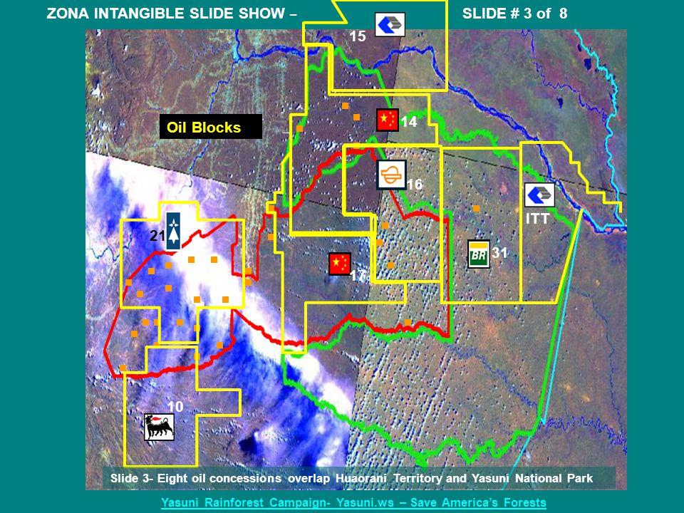 ITT 15 16 14 31 10 21 17 Oil Blocks ZONA INTANGIBLE SLIDE SHOW – SLIDE # 3 of 8 Yasuni Rainforest Campaign- Yasuni.ws – Save America's Forests Slide 3