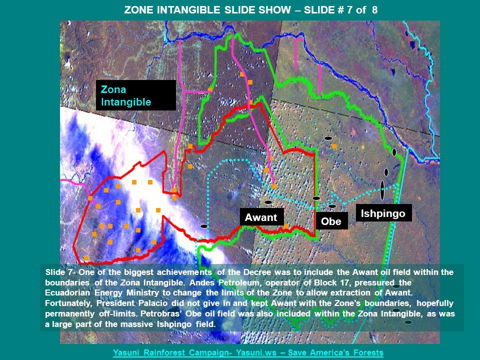 Zona Intangible Awant Obe Ishpingo ZONE INTANGIBLE SLIDE SHOW – SLIDE # 7 of 8 Yasuni Rainforest Campaign- Yasuni.ws – Save America's Forests Slide 7-