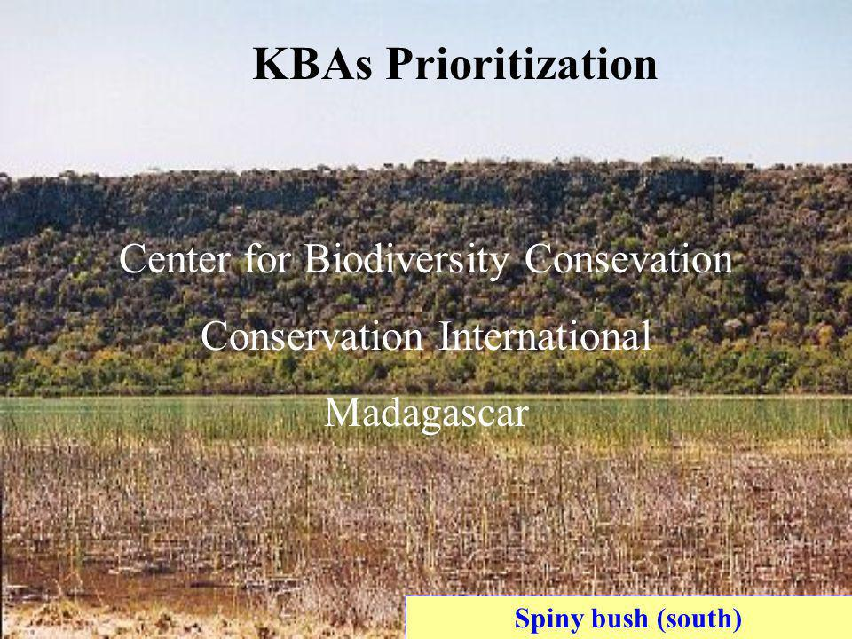 Spiny bush (south) KBAs Prioritization Center for Biodiversity Consevation Conservation International Madagascar