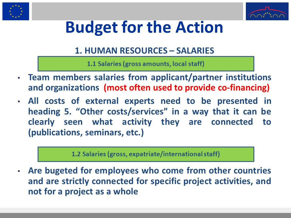 Budget for the Action 1. HUMAN RESOURCES – SALARIES Team members salaries from applicant/partner institutions and organizations (most often used to pr