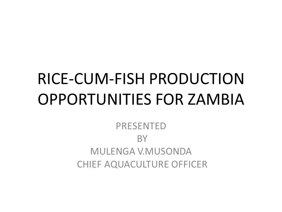 RICE-CUM-FISH PRODUCTION OPPORTUNITIES FOR ZAMBIA PRESENTED BY MULENGA V.MUSONDA CHIEF AQUACULTURE OFFICER