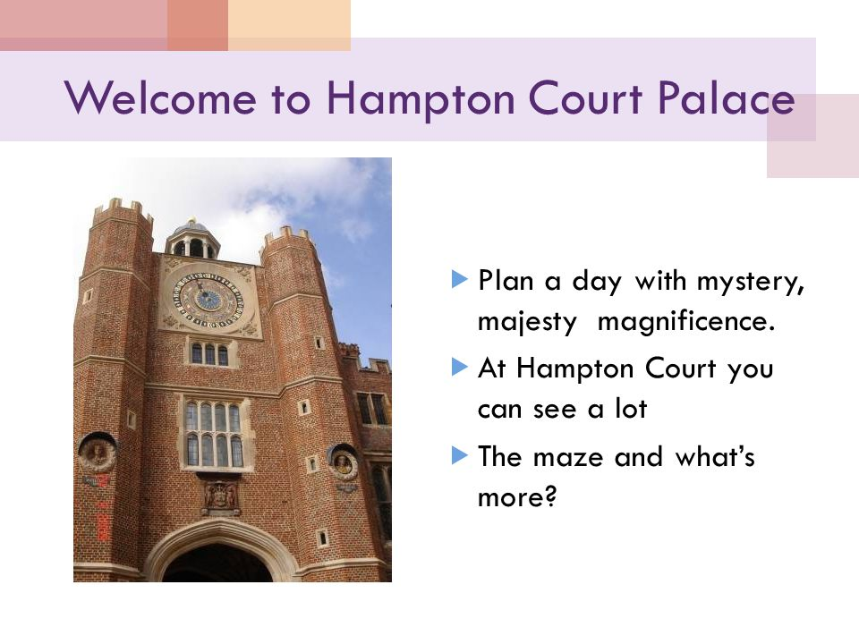 Welcome to Hampton Court Palace  Plan a day with mystery, majesty magnificence.  At Hampton Court you can see a lot  The maze and what's more?