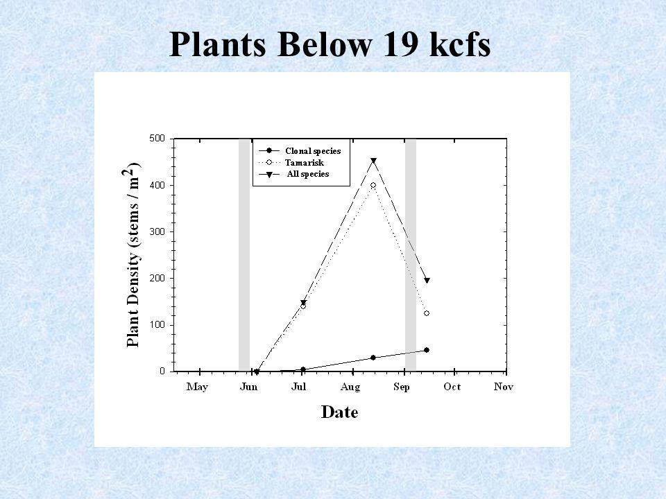 Plants Below 19 kcfs