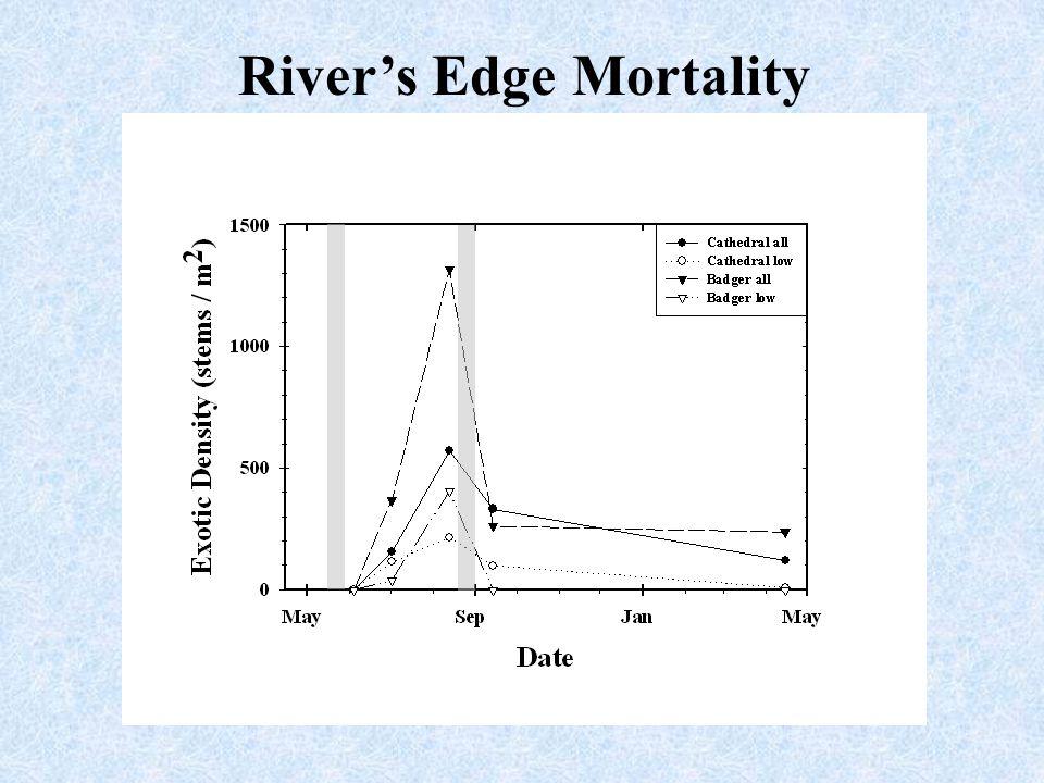 River's Edge Mortality