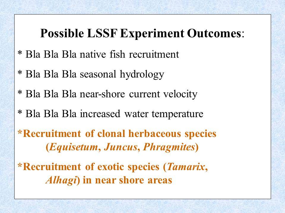 Possible LSSF Experiment Outcomes: * Bla Bla Bla native fish recruitment * Bla Bla Bla seasonal hydrology * Bla Bla Bla near-shore current velocity * Bla Bla Bla increased water temperature *Recruitment of clonal herbaceous species (Equisetum, Juncus, Phragmites) *Recruitment of exotic species (Tamarix, Alhagi) in near shore areas