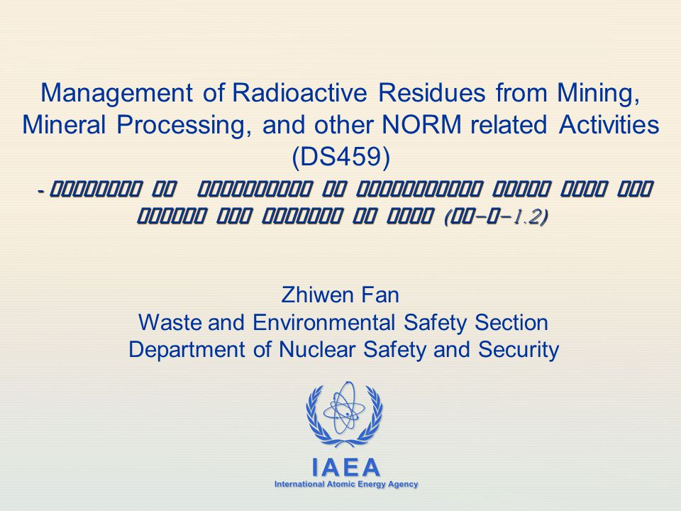 IAEA Outline Background Major revisions Challenges Summary 2