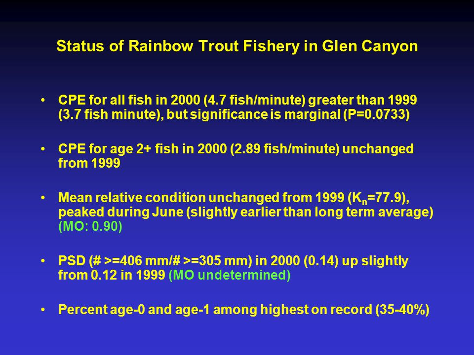 Status of Rainbow Trout Fishery in Glen Canyon CPE for all fish in 2000 (4.7 fish/minute) greater than 1999 (3.7 fish minute), but significance is marginal (P=0.0733) CPE for age 2+ fish in 2000 (2.89 fish/minute) unchanged from 1999 Mean relative condition unchanged from 1999 (K n =77.9), peaked during June (slightly earlier than long term average) (MO: 0.90) PSD (# >=406 mm/# >=305 mm) in 2000 (0.14) up slightly from 0.12 in 1999 (MO undetermined) Percent age-0 and age-1 among highest on record (35-40%)