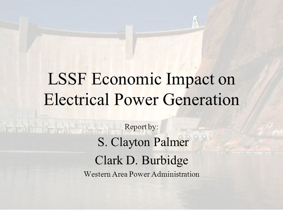 LSSF Economic Impact on Electrical Power Generation Report by: S. Clayton Palmer Clark D. Burbidge Western Area Power Administration