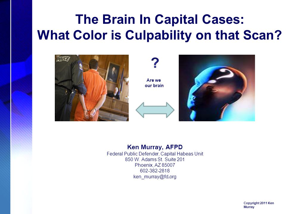 The Brain In Capital Cases: What Color is Culpability on that Scan.