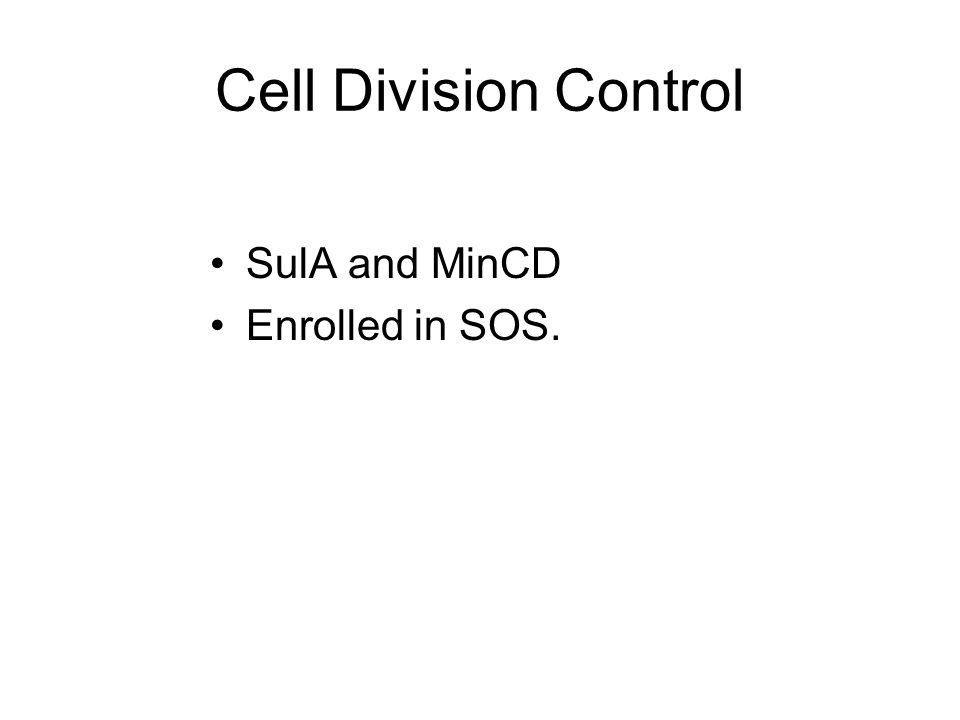 Cell Division Control SulA and MinCD Enrolled in SOS.