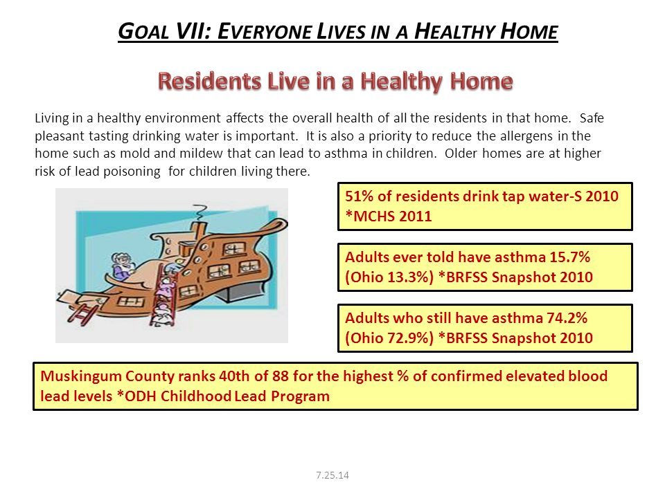 G OAL VII: E VERYONE L IVES IN A H EALTHY H OME 51% of residents drink tap water-S 2010 *MCHS 2011 Adults ever told have asthma 15.7% (Ohio 13.3%) *BRFSS Snapshot 2010 Adults who still have asthma 74.2% (Ohio 72.9%) *BRFSS Snapshot 2010 Muskingum County ranks 40th of 88 for the highest % of confirmed elevated blood lead levels *ODH Childhood Lead Program Living in a healthy environment affects the overall health of all the residents in that home.