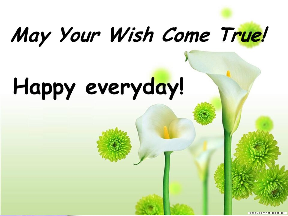 May Your Wish Come True! Happy everyday!