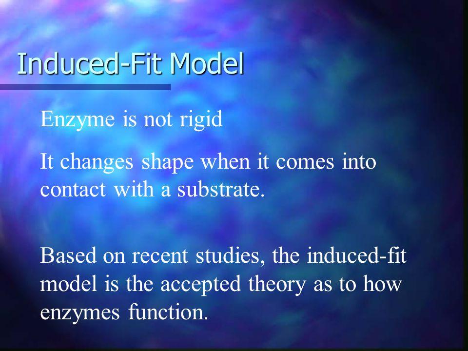 + Lock-and-Key Model +
