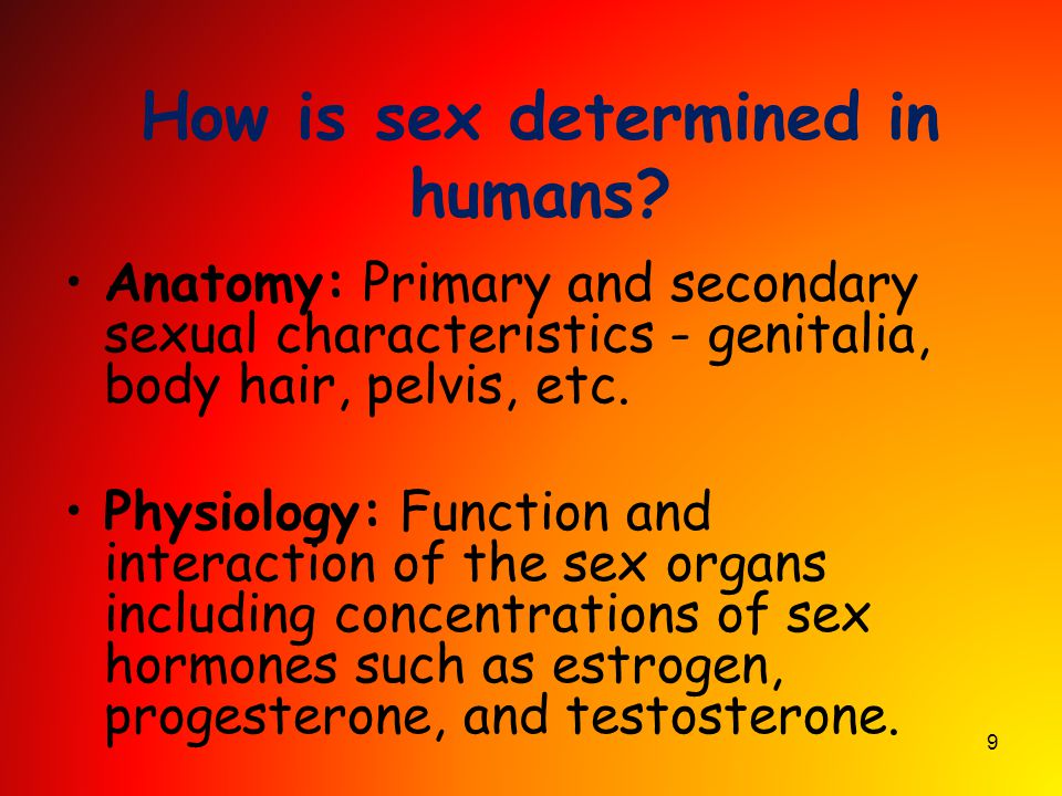 9 How is sex determined in humans? Anatomy: Primary and secondary sexual characteristics - genitalia, body hair, pelvis, etc. Physiology: Function and