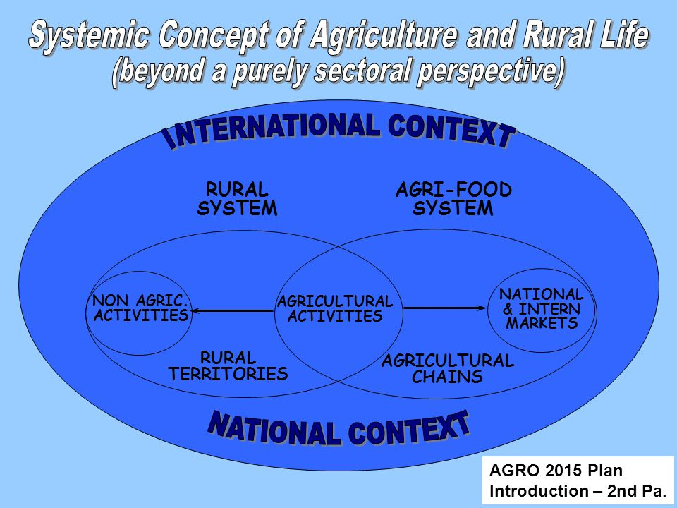AGRI-FOOD SYSTEM AGRICULTURAL ACTIVITIES AGRICULTURAL CHAINS NATIONAL & INTERN MARKETS RURAL TERRITORIES NON AGRIC.