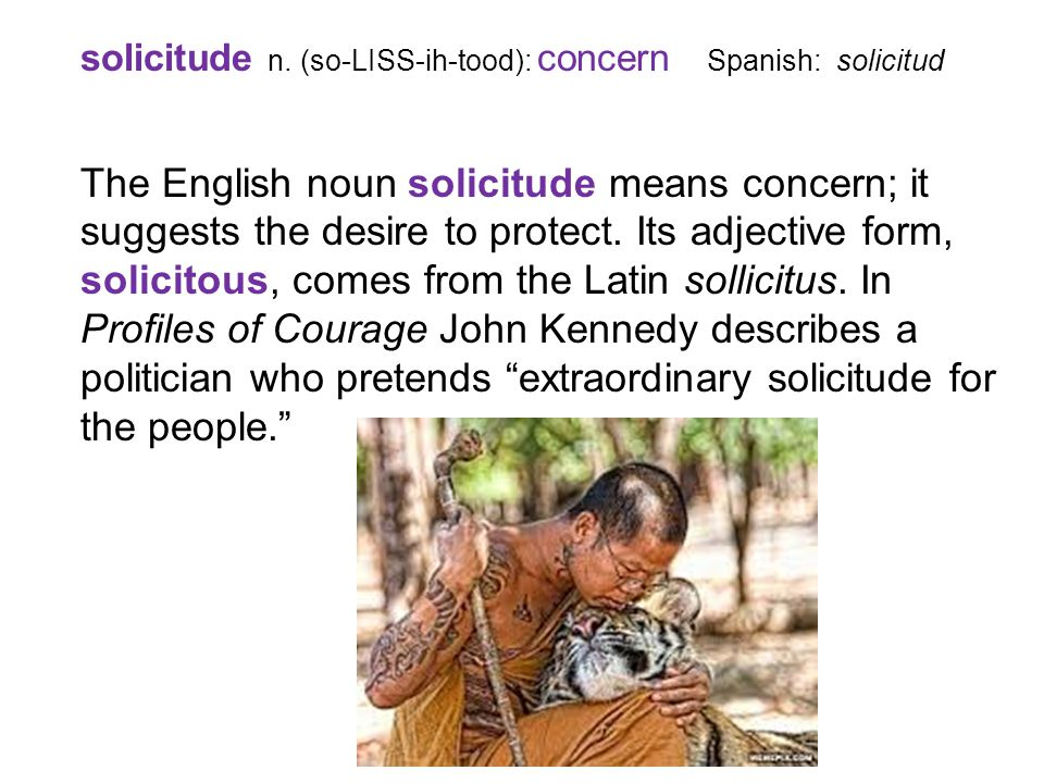 solicitude n. (so-LISS-ih-tood): concern Spanish: solicitud The English noun solicitude means concern; it suggests the desire to protect. Its adjectiv